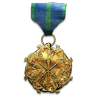 File:Lead Force Medal.png