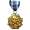 Support Combat Medal