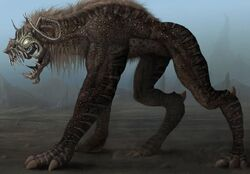 Hyaener