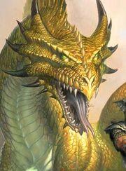 Dragongolden455