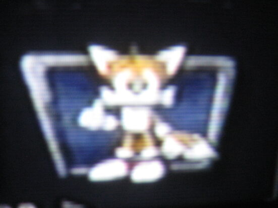 Shadow the Hedgehog 036
