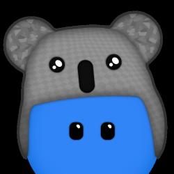 Team Koala