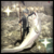 P4G Trophy FishingMaster