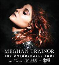 The Untochable Tour - Cover