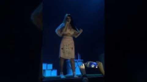Part 1 of Melanie Martinez Final CONCERT In Los Angeles