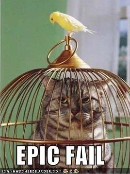 File:Funny-pictures-bird-cat-cage.jpg