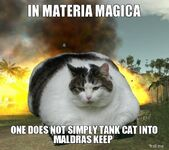 In-materia-magica-one-does-not-simply-tank-cat-into-maldras-keep