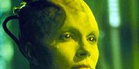 Collettività Borg
