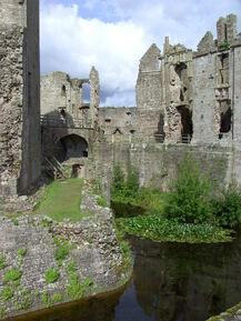 Raglan Castle (4)