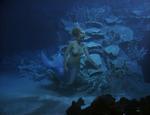 Venus Underwater