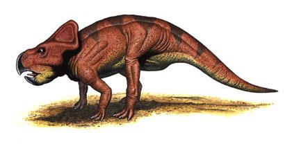 File:Protoceratops-ilivetolearn.jpg