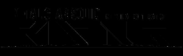 Файл:Metal Gear Solid Rising logo.png