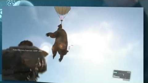 Bear in Metal Gear Solid V The Phantom Pain