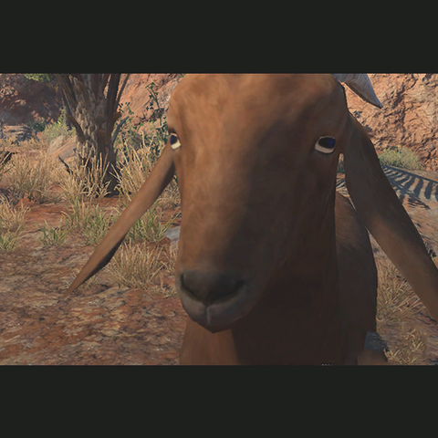 File:ACC Goat TPP.png