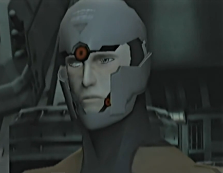 File:Gray Fox's face.png
