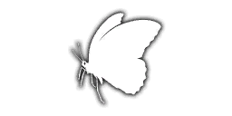 File:Emb CodeButterfly iTPP.png