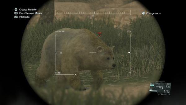 File:Himalayan Brown Bear.jpg