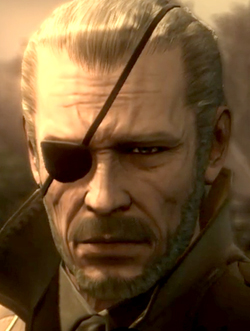 File:Big Boss MGS4.jpg