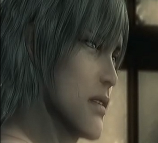 File:RaidenMGS4Ending.png