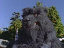 Terror Bear