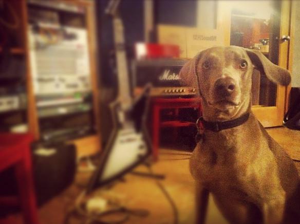 File:Ernie in studio.png