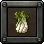 MSA item I Chinese Cabbage