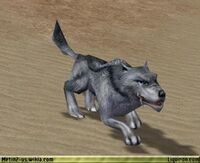 Hungry Blue Wolf 2
