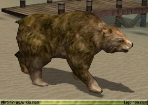 File:Hungry Bear 3.jpg