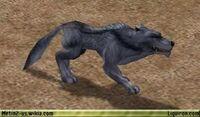Blue Wolf 1