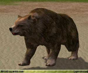 File:Bear 1.jpg