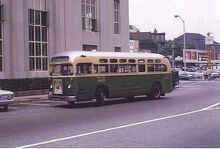 CR & L -13 SEAVIEW AVE. BUS - BPT. 1960s