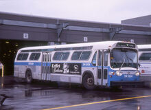 SIMILAR TO BPT. CT GRAY LINE BUS without blue stripe