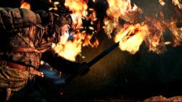 Torchlight0