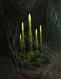 Durable plantform