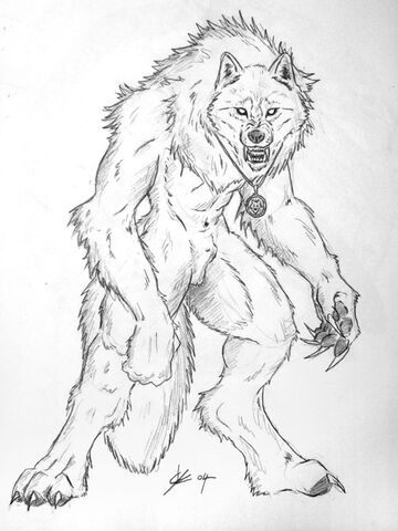 File:Jerrin The white warrior by BLACK WOLF .jpg