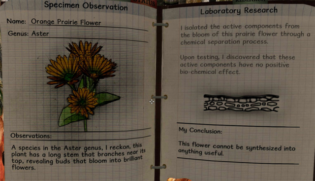 File:Orange prairie flower notes.png