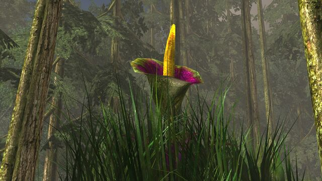 File:Titan plant.jpg