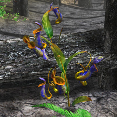 File:Carnivorous pitcher plant.png