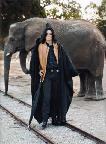 File:Michael Joe Jackson Rare Picture.jpg