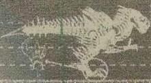 File:Velociraptor Dinobot.jpg