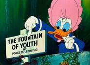 Dons-fountain-of-youth-c2a9-walt-disney