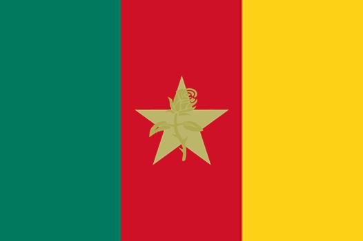 File:Flag of Nedlandic Cameroonian Territory.png