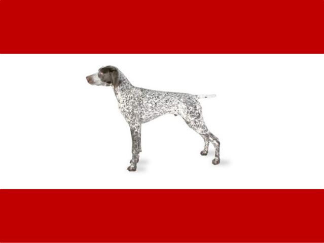 File:Flag of Er Rex.png