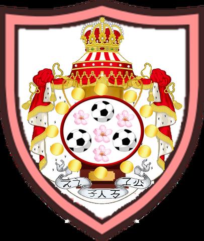File:Soccer nation team logo.png