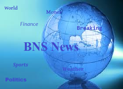 File:BNS News Flag.png