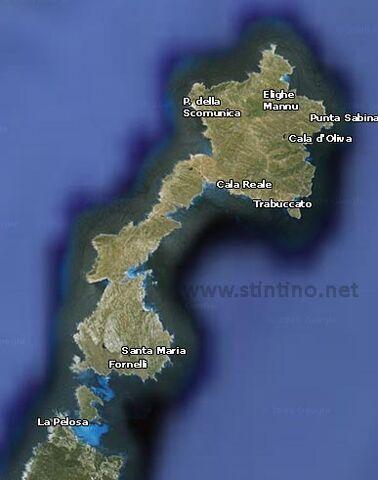 File:Asinara.jpg
