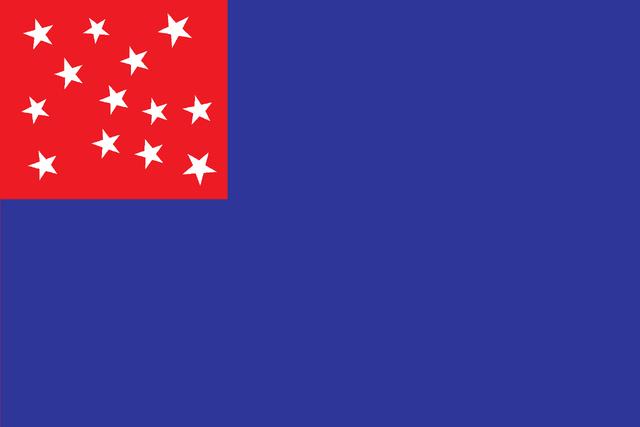 File:Old Bloomingdale Flag.png