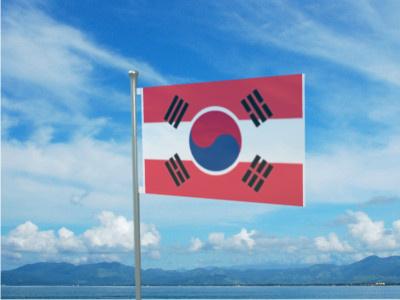 File:Secondary flag.jpg