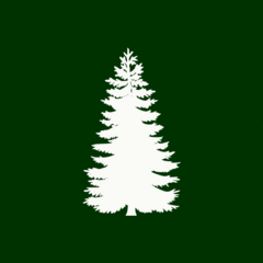 Flag of Arborview
