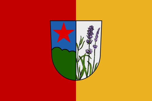 File:DV flag.png